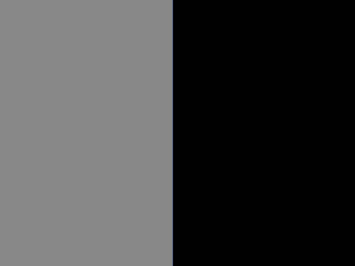 Zinc/czarny