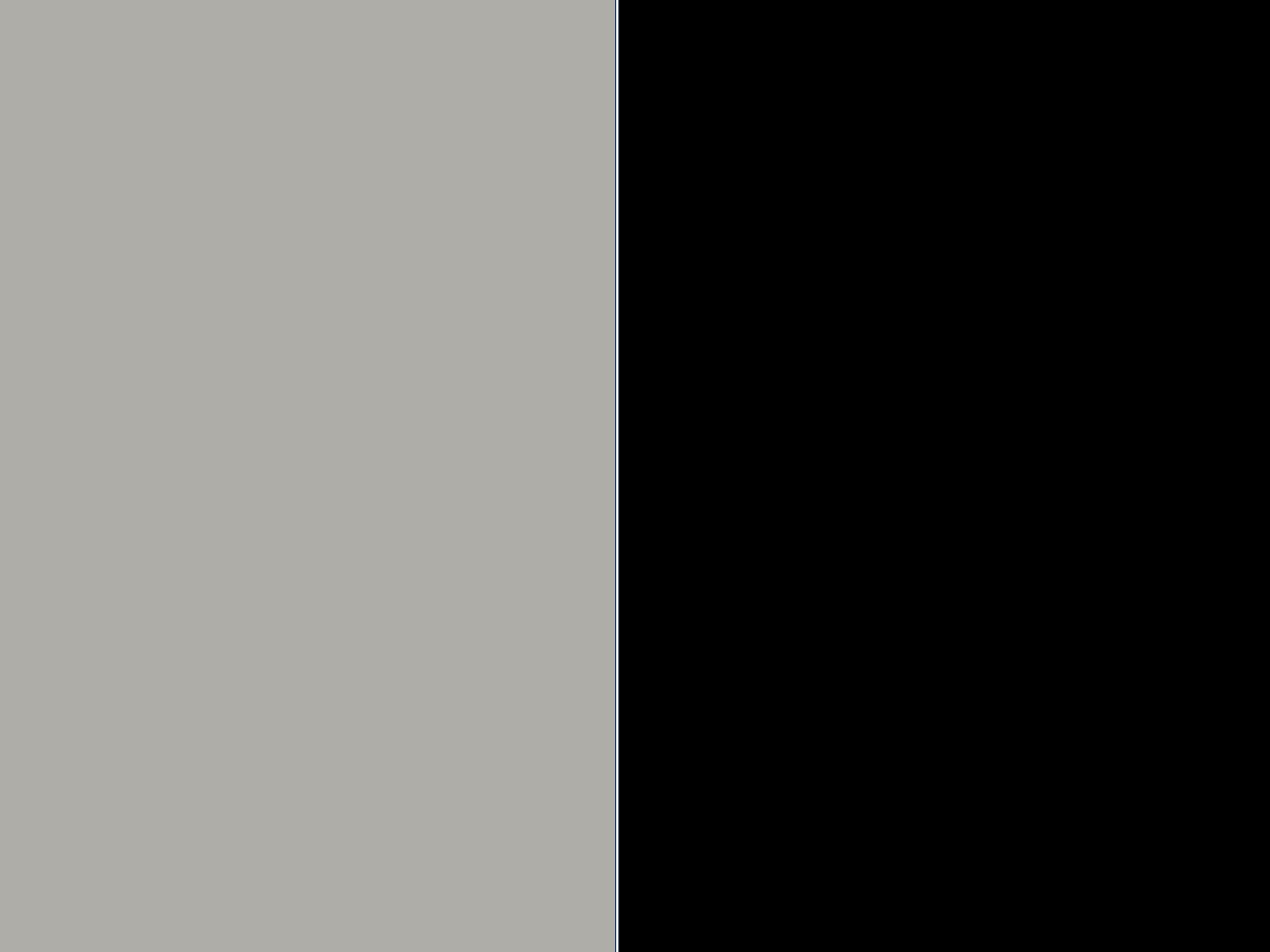 light grey/czarny